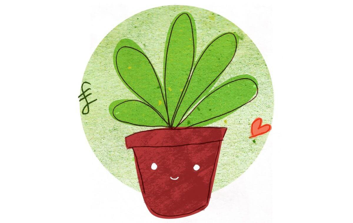 Gardening Inside Happiness